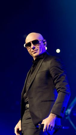 Pitbull, photo, 5k (vertical)