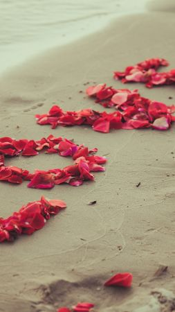 love image, heart, 5k, beach, sea, flowers (vertical)