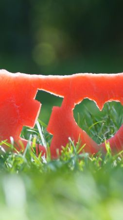 love image, watermelon, grass, 4k (vertical)