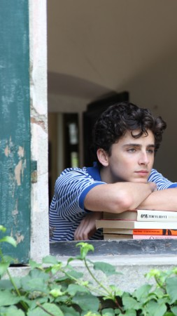 Call Me by Your Name, Timothee Chalamet, 5k (vertical)