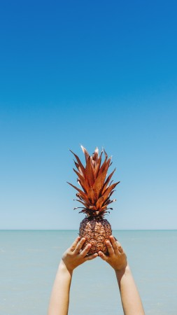 pineapple, sky, ocean, 5k (vertical)