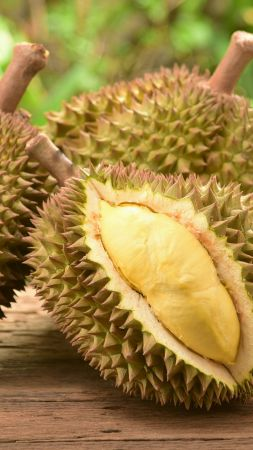 durian, fruit, 5k (vertical)