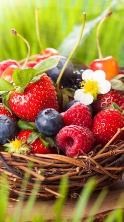 strawberry, raspberries, blueberries, cherries, berries, 5k (vertical)