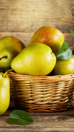 pear, fruit, 5k (vertical)