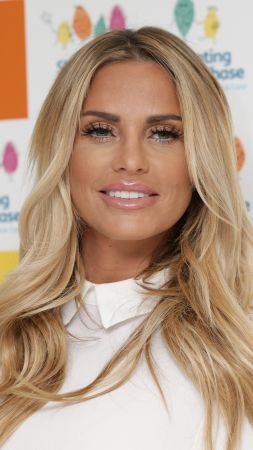 Katie Price, photo, 4k (vertical)