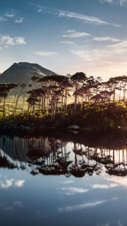 Ireland, lake, mountains, tree, sunrise, 4k (vertical)