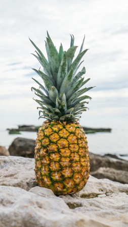 pineapple, fruit, stones, beach, 4k (vertical)