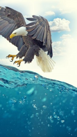 Fish, eagle, underwater, 4k (vertical)