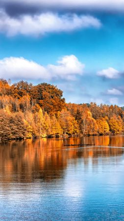 Autumn, lake, forest, 5k (vertical)