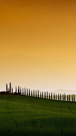 Tuscany, Italy, Europe, sky, field, 5k (vertical)