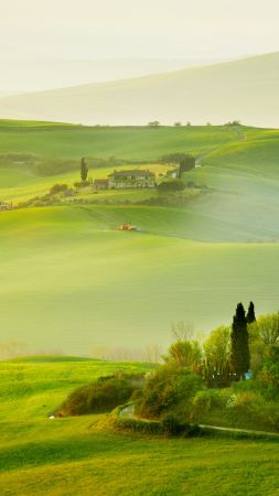Tuscany, Italy, Europe, hills, field, fog, 5k (vertical)