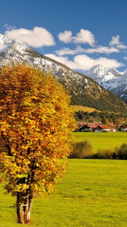 Allgaeu, Germany, Europe, mountains, autumn, tree, 5k (vertical)