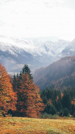 Oberstdorf, Germany, mountains, autumn, forest, 4k (vertical)