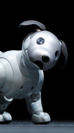 Sony Aibo, robot, dog, HD (vertical)