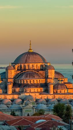 Sultan Ahmed Mosque, Turkey, Istanbul, sunrise, 4k (vertical)