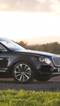 Bentley Bentayga Field Sports, 2018 Cars, 4k (vertical)