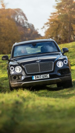 Bentley Bentayga Field Sports, 2018 Cars, 5k (vertical)