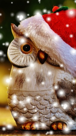 Christmas, New Year, owl, 5k (vertical)