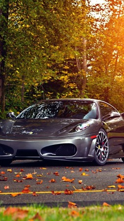 Ferrari 430 Scuderia, 2018 Cars, autumn, road, 5k (vertical)
