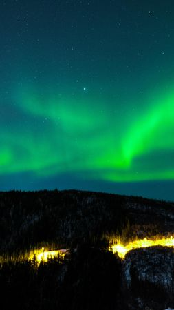 northern lights, sky, winter, mountains, forest, 5k (vertical)
