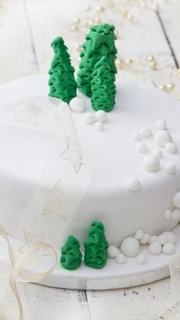 christmas cake, receipt, 5k (vertical)