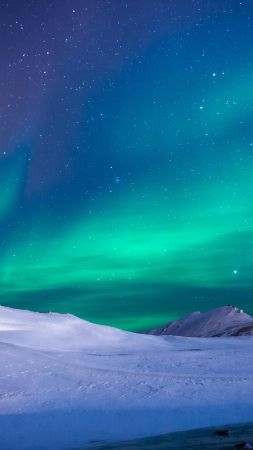 northern lights, sky, winter, mountains, 5k (vertical)