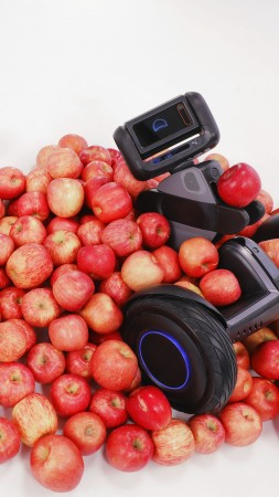 Segway Loomo, CES 2018, apples, 5k (vertical)