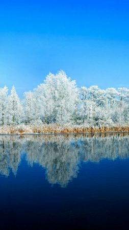 lake, forest, snow, winter, 5k (vertical)