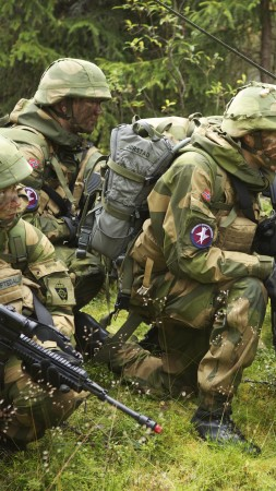 Norwegian Army, Norwegian Armed Forces, soldier, camo, mission, rifle, forest (vertical)