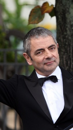 Johnny English Strikes Again, Rowan Atkinson, 4k (vertical)
