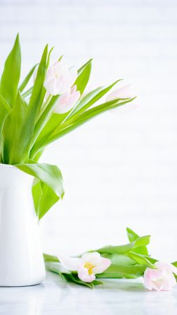 flowers, tulips, vase, 5k (vertical)