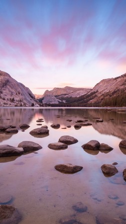 yosemite, 5k, 4k wallpaper, forest, OSX, apple, lake, stones, water (vertical)