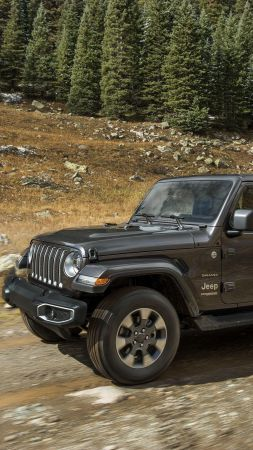 Jeep Wrangler, SUV, 2019 Cars, 4K (vertical)