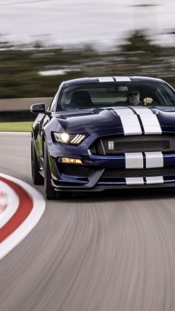 Ford Mustang Shelby GT350, 2019 Cars, 4K (vertical)