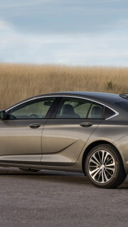 Buick Regal Avenir, 2019 Cars, 5K (vertical)