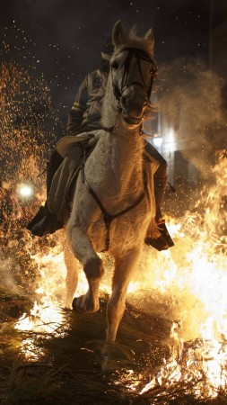 Up-Helly-Аa, Scotland, festival, fire, torchlight procession, Vikings, event (vertical)