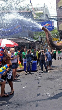 Songkran, Thai New Year, Thailand, Water Festival, elephant, event (vertical)