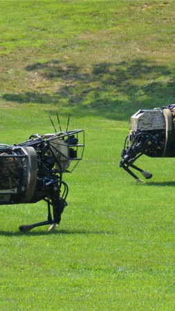 LS3, Cujo, Best Robots of 2015, robotic mule, army, robot, U.S. Army, test, patrol (vertical)
