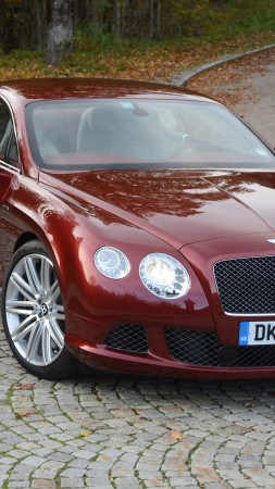 Bentley Continental GT, luxury cars, Bentley, Gran Turismo, Supersports, GTZ, red, front (vertical)