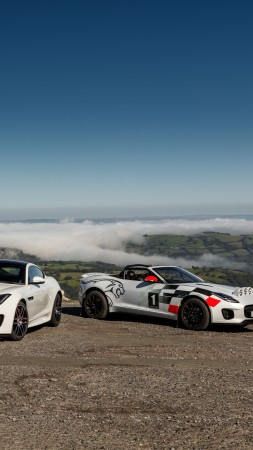 Jaguar F-Type Rally Car, 2018 Cars, 8K (vertical)