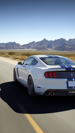 Ford Mustang Shelby GT350, Shelby, GT350, Mustang, sports car, concept, supercar (vertical)