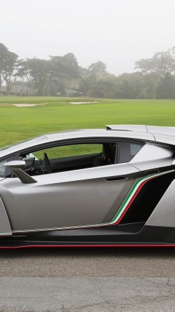 Lamborghini Veneno, supercar, Lamborghini, sports car, limited edition, speed, side (vertical)