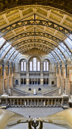 Natural History Museum, London, tourism, travel, vacation, resort (vertical)