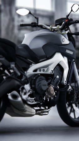 Yamaha MT-09, Streetfighter, motorcycle, racing, sport, bike, test drive, buy, rent, road (vertical)