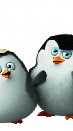 Penguins of Madagascar, cute penguin, cartoon, Madagascar, funny, Skipper, Kowalski, Rico, Private, watch, HD, Best Animation Movies of 2015