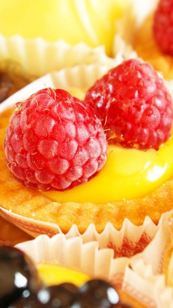 Cupcake, fruits, raspberry (vertical)