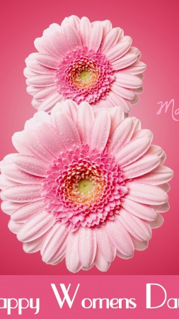 International Women's Day, March 8, flowers, pink, gerbera (vertical)