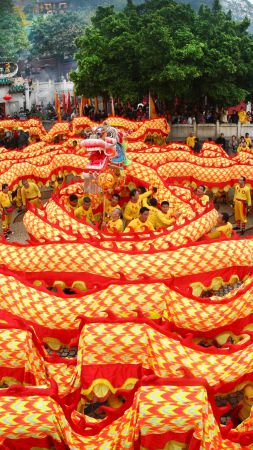 Chinese New Year, Spring Festival, dragon, orange (vertical)