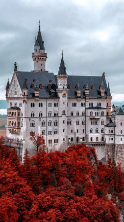 Neuschwanstein castle, Bavaria, Germany, Tourism, Travel (vertical)
