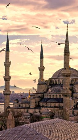 Sultan Ahmed Mosque, Istanbul, Turkey, Travel, Tourism (vertical)